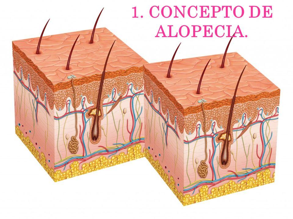 Grupo de enfermedades que cursan con una disminución de la densidad o con ausencia de pelo