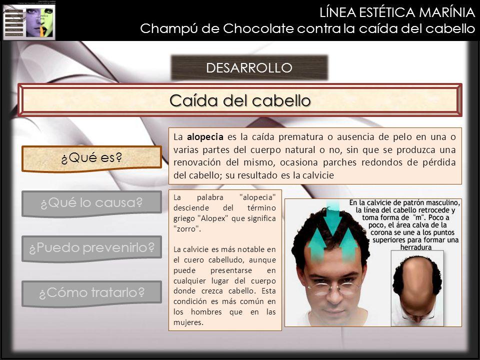 LÍNEA ESTÉTICA MARÍNIA Champú de Chocolate contra la caída del cabello DESARROLLO Caída del cabello ¿Qué es? ¿Qué lo causa? ¿Puedo prevenirlo? ¿Cómo t