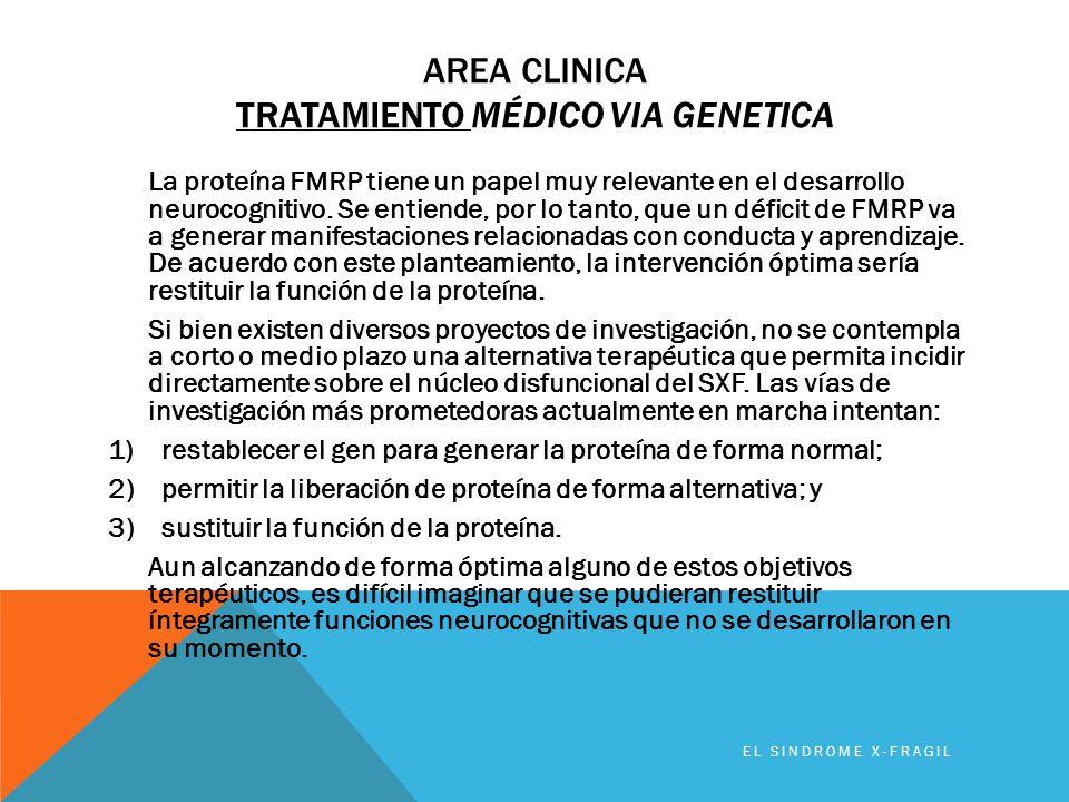 AREA CLINICA TRATAMIENTO MÉDICO VIA GENETICA La proteína FMRP tiene un papel muy relevante en el desarrollo neurocognitivo. Se entiende, por lo tanto,