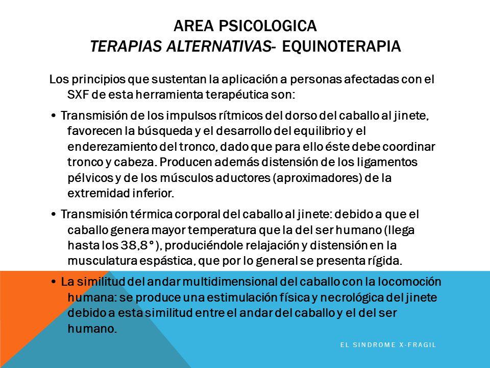 AREA PSICOLOGICA TERAPIAS ALTERNATIVAS- EQUINOTERAPIA EL SINDROME X-FRAGIL Los principios que sustentan la aplicación a personas afectadas con el SXF
