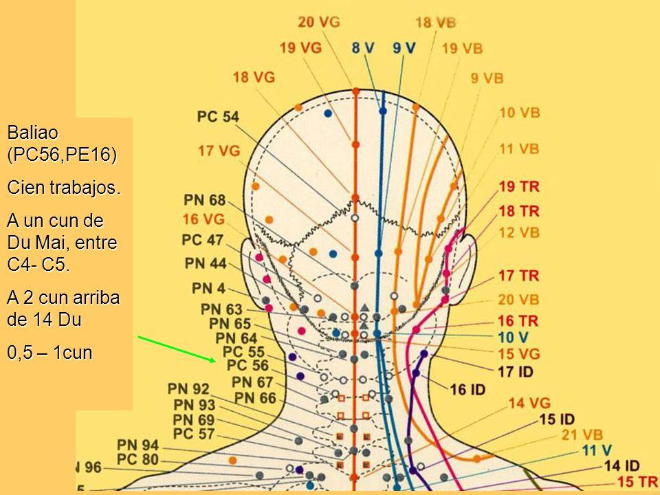 Baliao (PC56,PE16) Cien trabajos. A un cun de Du Mai, entre C4- C5. A 2 cun arriba de 14 Du 0,5 – 1cun