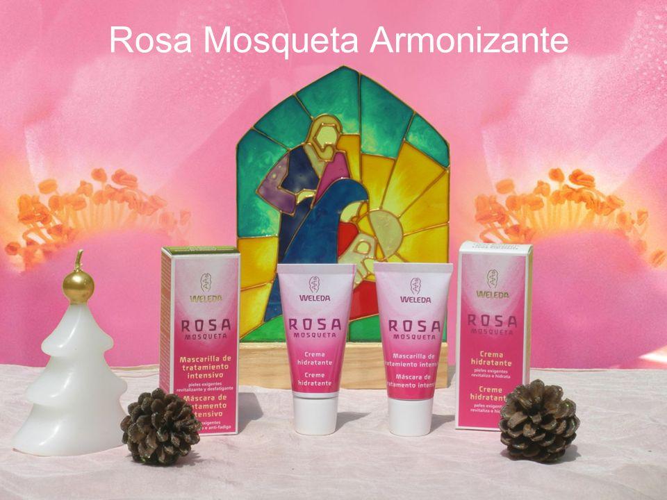 Rosa Mosqueta Armonizante
