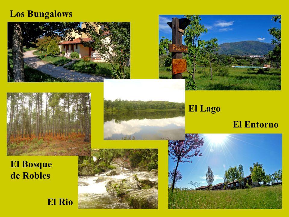 Los Bungalows El Bosque de Robles El Lago El Rio El Entorno