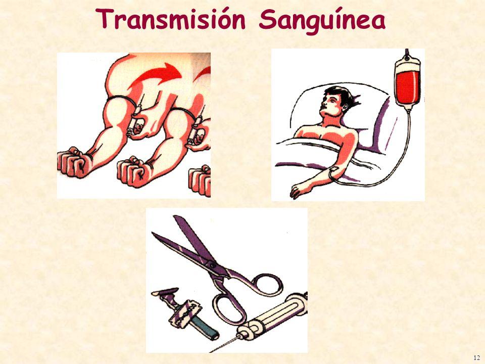 Transmisión Sanguínea 12
