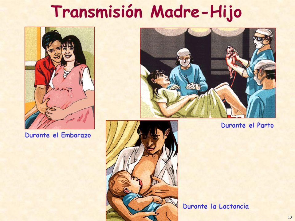 Transmisión Madre-Hijo Durante el Parto Durante el Embarazo Durante la Lactancia 13