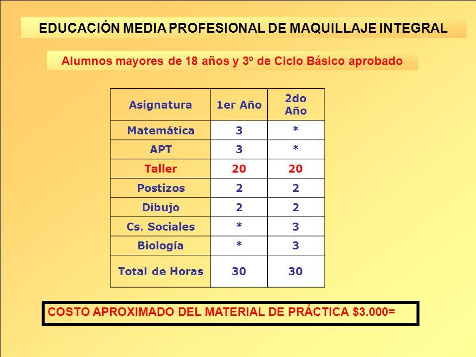 EDUCACIÓN MEDIA PROFESIONAL DE MAQUILLAJE INTEGRAL Asignatura1er Año 2do Año Matemática3* APT3* Taller20 Postizos22 Dibujo22 Cs.