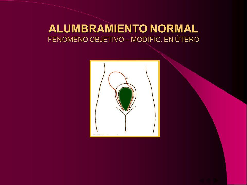 ALUMBRAMIENTO NORMAL SIGNOS ESPONTANEOS Y ARTIFICIALES DE DESPRENDIMIENTO – Pérdida hemática – Disminución diámetro transv.