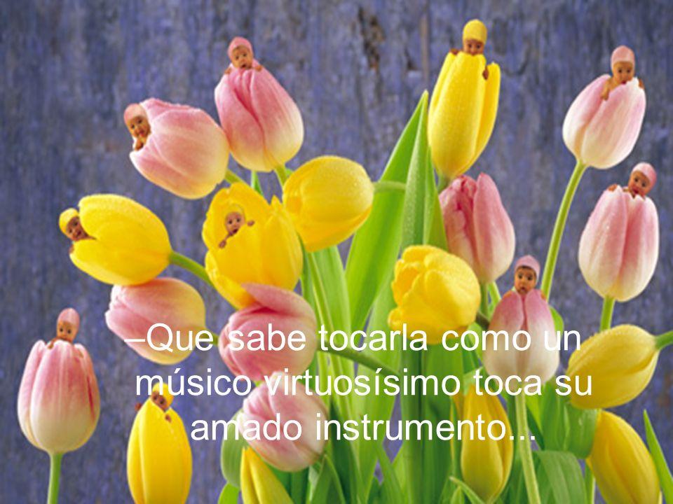–Que sabe tocarla como un músico virtuosísimo toca su amado instrumento...