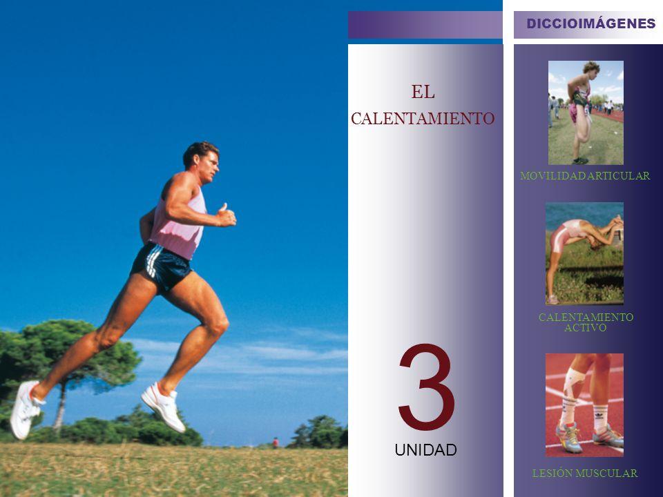 EL CALENTAMIENTO 3 UNIDAD DICCIOIMÁGENES MOVILIDAD ARTICULAR CALENTAMIENTO ACTIVO LESIÓN MUSCULAR