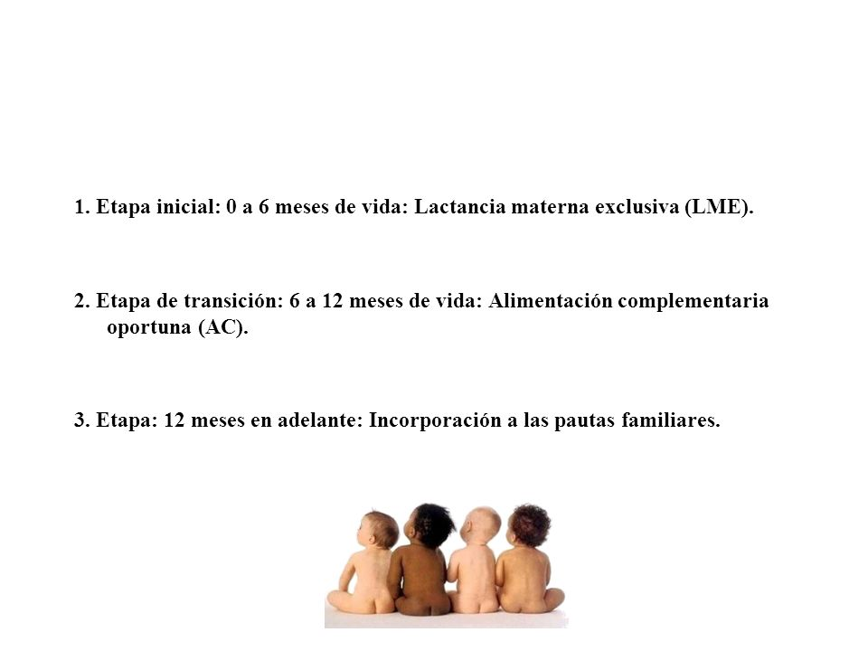 1.Etapa inicial: 0 a 6 meses de vida: Lactancia materna exclusiva (LME).