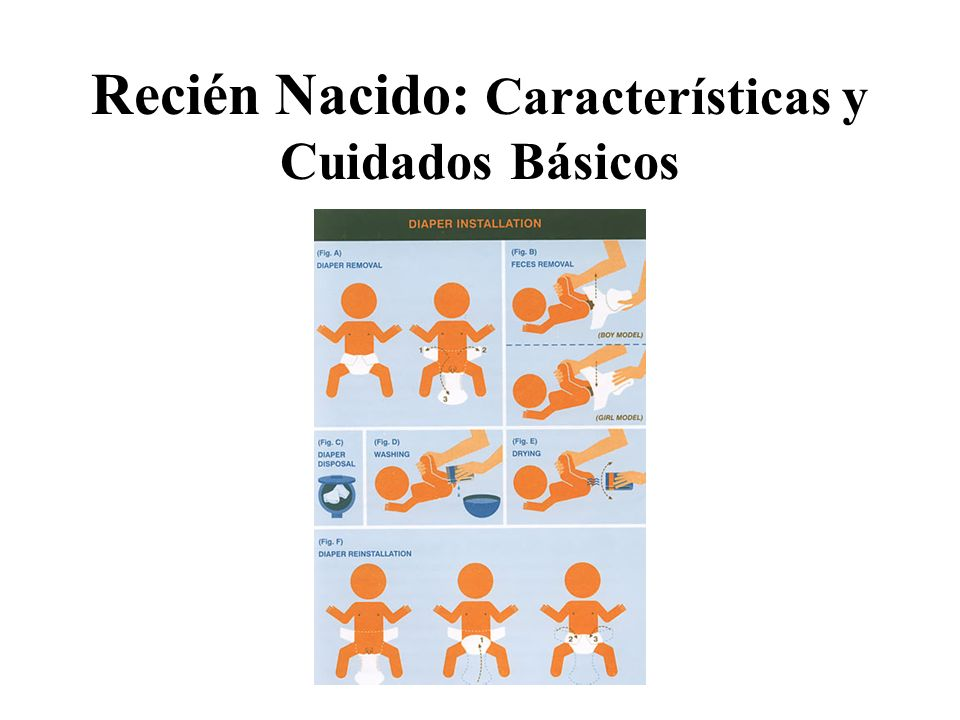 Recién Nacido: Características y Cuidados Básicos