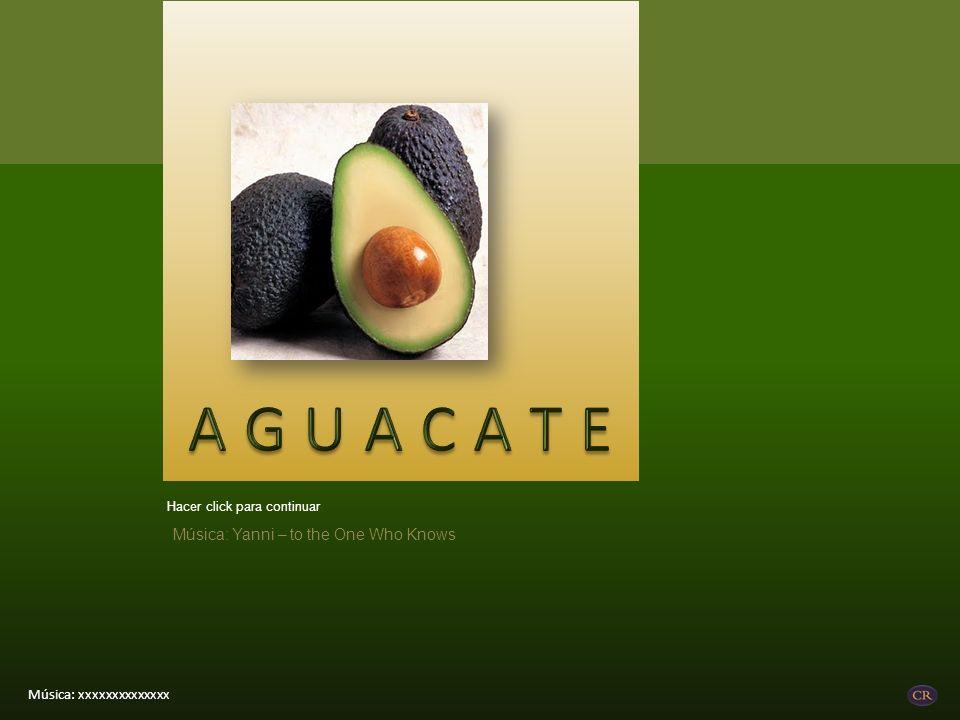 El folato Esta vitamina B -soluble en agua- promueve el desarrollo saludable de las células y tejidos.