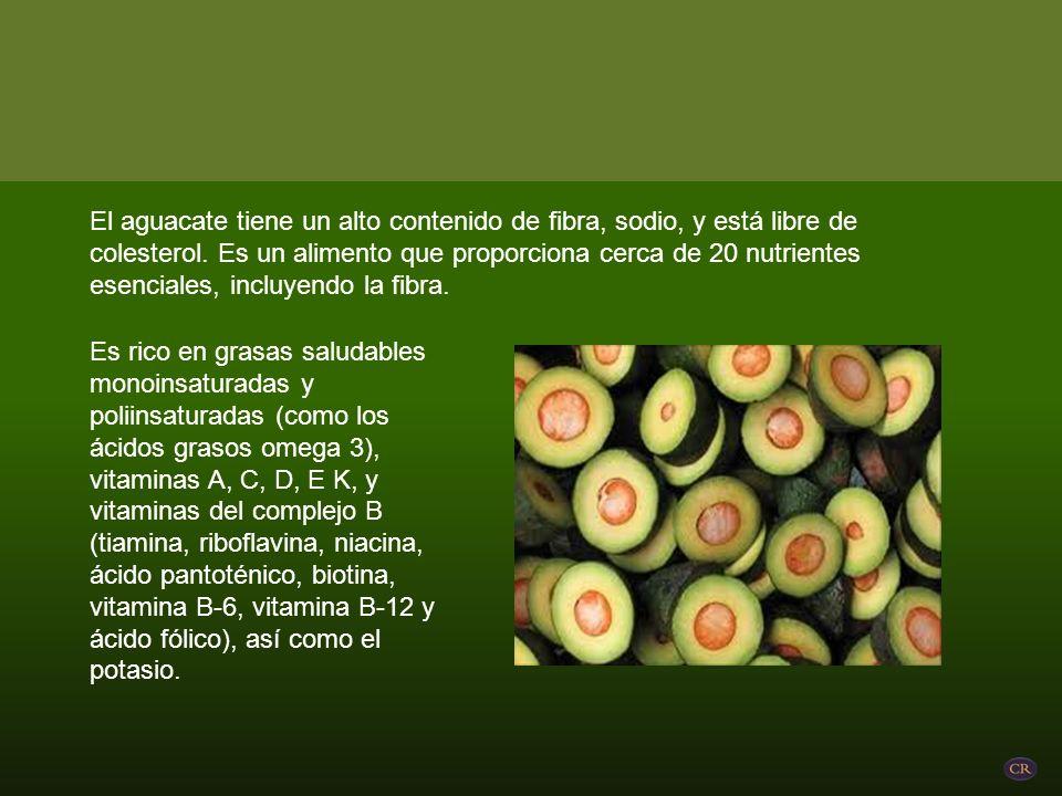 El aguacate tiene un alto contenido de fibra, sodio, y está libre de colesterol.