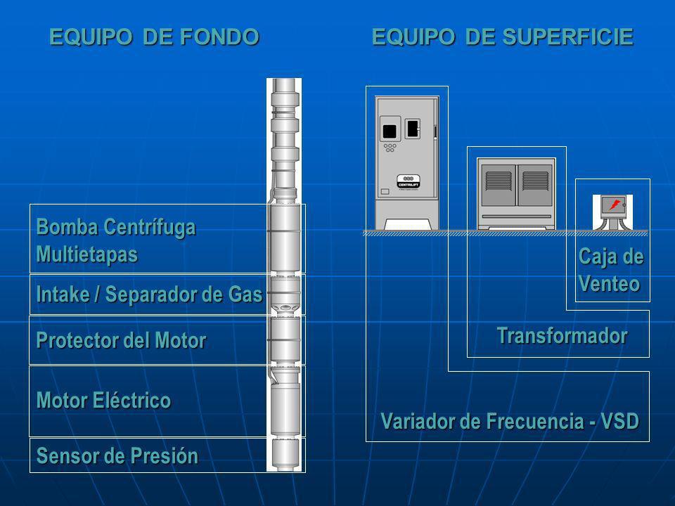 Variador de Frecuencia - VSD Transformador Caja de Venteo Bomba Centrífuga Multietapas Intake / Separador de Gas Motor Eléctrico Protector del Motor S