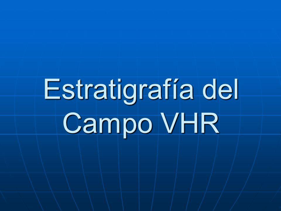 Estratigrafía del Campo VHR