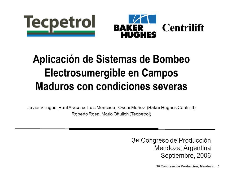 3 er Congreso de Producción, Mendoza - 1 Aplicación de Sistemas de Bombeo Electrosumergible en Campos Maduros con condiciones severas Javier Villegas,