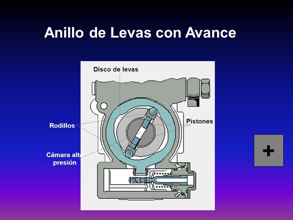 Anillo de Levas con Avance Disco de levas Pistones Rodillos Cámara alta presión +