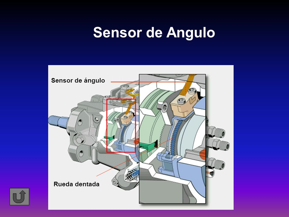 Sensor de Angulo Sensor de ángulo Rueda dentada