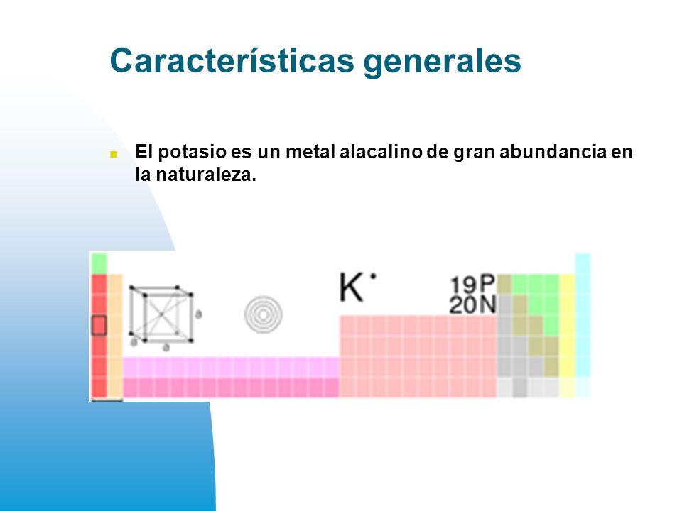 Características generales El potasio es un metal alacalino de gran abundancia en la naturaleza.