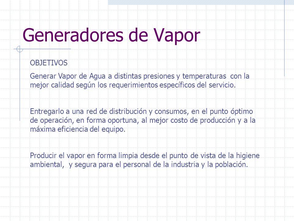 Generadores de Vapor OBJETIVOS Generar Vapor de Agua a distintas presiones y temperaturas con la mejor calidad según los requerimientos específicos del servicio.