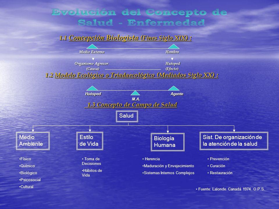 1.1 Concepción Biologista ( Fines Siglo XIX ) : 1.1 Concepción Biologista ( Fines Siglo XIX ) : Medio Externo Hombre Organismo Agresor Huésped (Causa) (Efecto) (Causa) (Efecto) 1.2 Modelo Ecológico o Triadaecológico ( Mediados Siglo XX ) : 1.2 Modelo Ecológico o Triadaecológico ( Mediados Siglo XX ) : Huésped Agente Huésped Agente M.A.