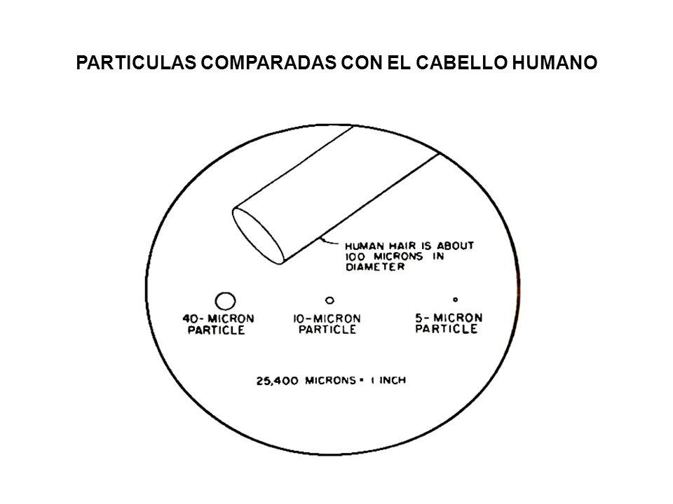 PARTICULAS COMPARADAS CON EL CABELLO HUMANO