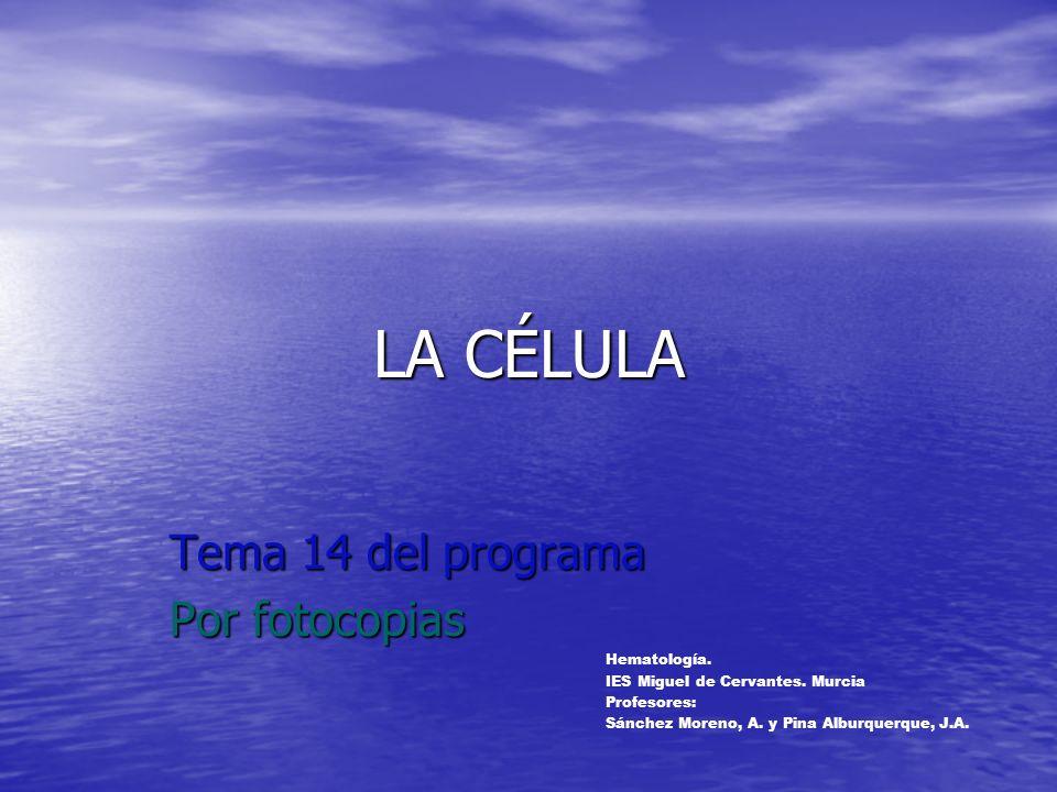 LA CÉLULA Tema 14 del programa Por fotocopias Hematología.