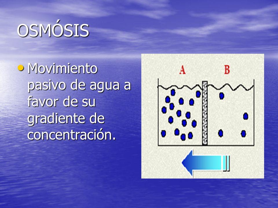 OSMÓSIS Movimiento pasivo de agua a favor de su gradiente de concentración.