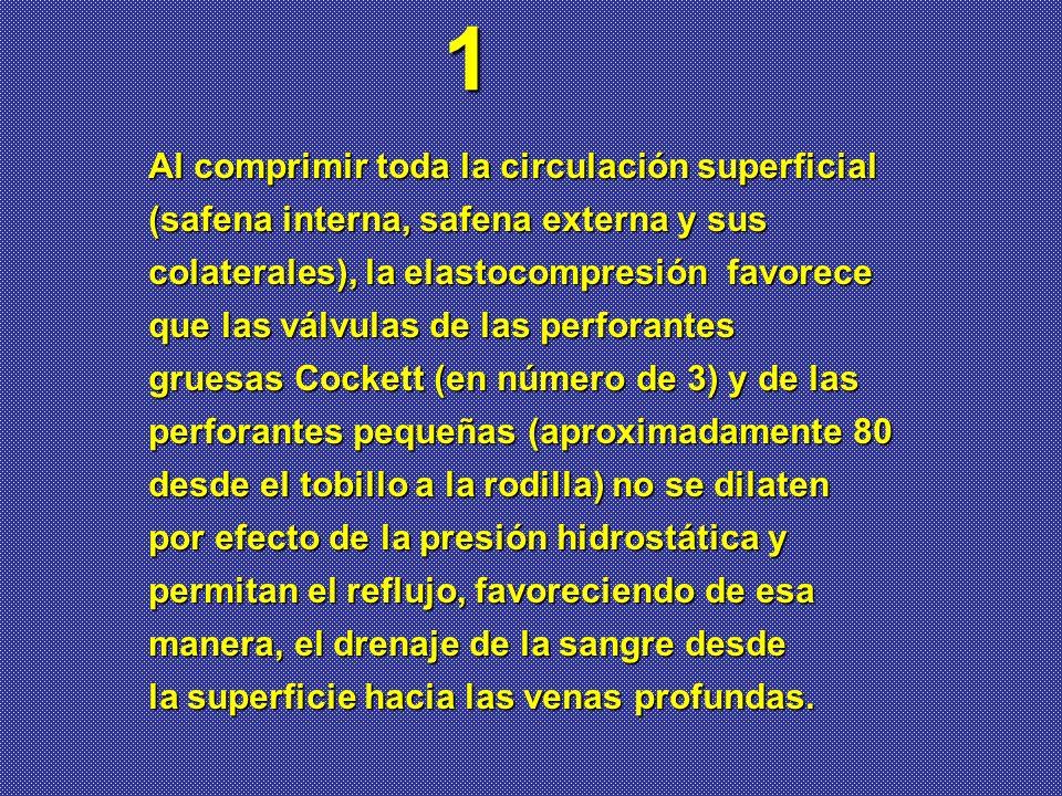 Al comprimir toda la circulación superficial (safena interna, safena externa y sus colaterales), la elastocompresión favorece que las válvulas de las