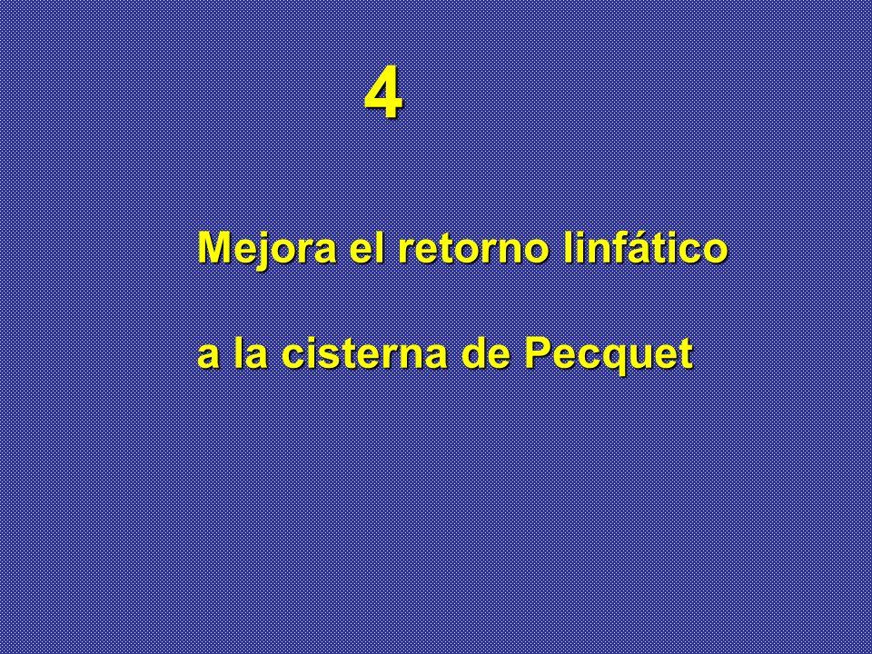 Mejora el retorno linfático a la cisterna de Pecquet 4