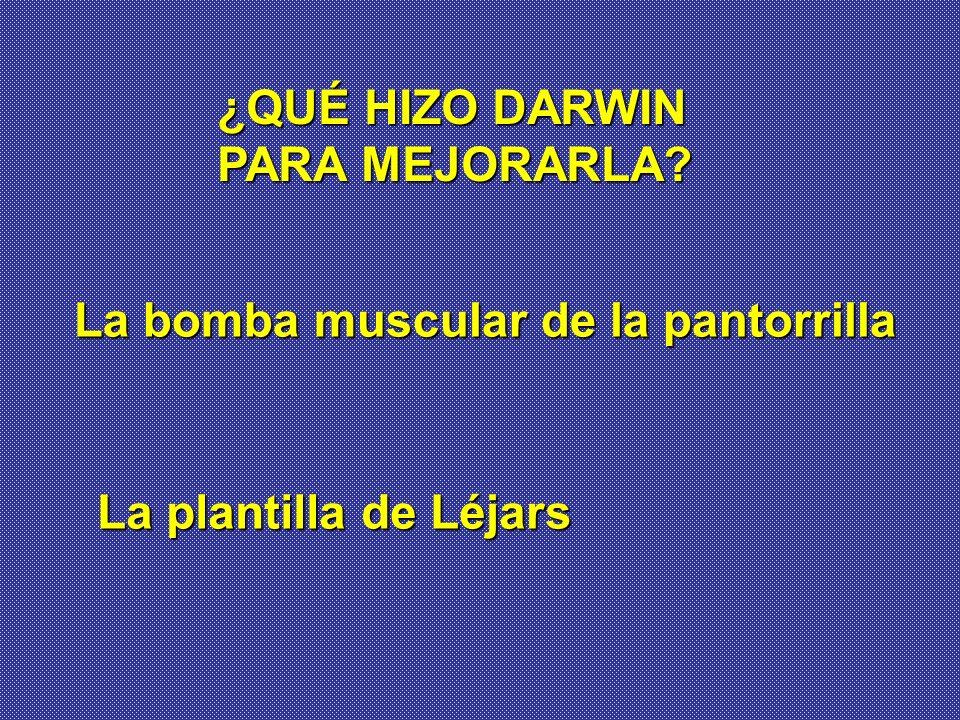 ¿QUÉ HIZO DARWIN PARA MEJORARLA? La bomba muscular de la pantorrilla La plantilla de Léjars