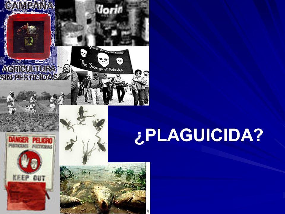 ¿PLAGUICIDA?