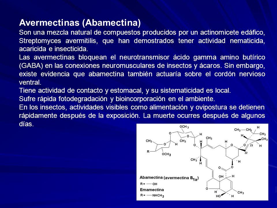 Avermectinas (Abamectina) Son una mezcla natural de compuestos producidos por un actinomicete edáfico, Streptomyces avermitilis, que han demostrados t