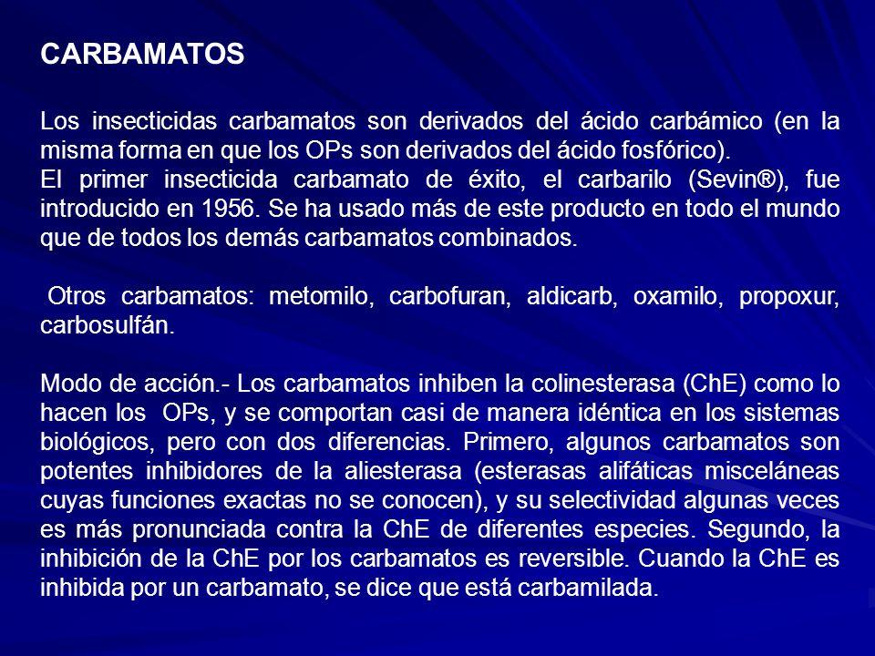 CARBAMATOS Los insecticidas carbamatos son derivados del ácido carbámico (en la misma forma en que los OPs son derivados del ácido fosfórico). El prim