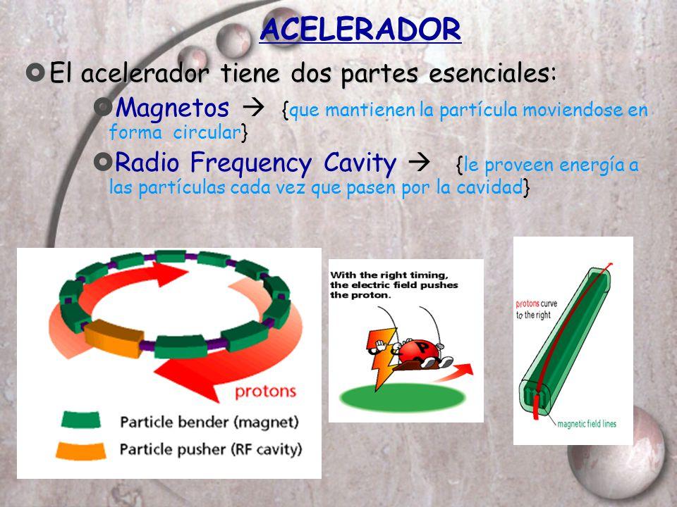ACELERADOR El acelerador tiene dos partes esenciales El acelerador tiene dos partes esenciales: Magnetos {que mantienen la partícula moviendose en for