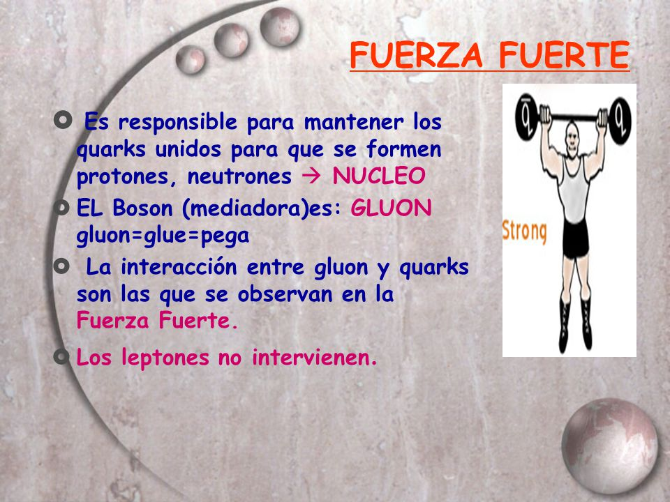 FUERZA FUERTE Es responsible para mantener los quarks unidos para que se formen protones, neutrones NUCLEO EL Boson (mediadora)es: GLUON gluon=glue=pe
