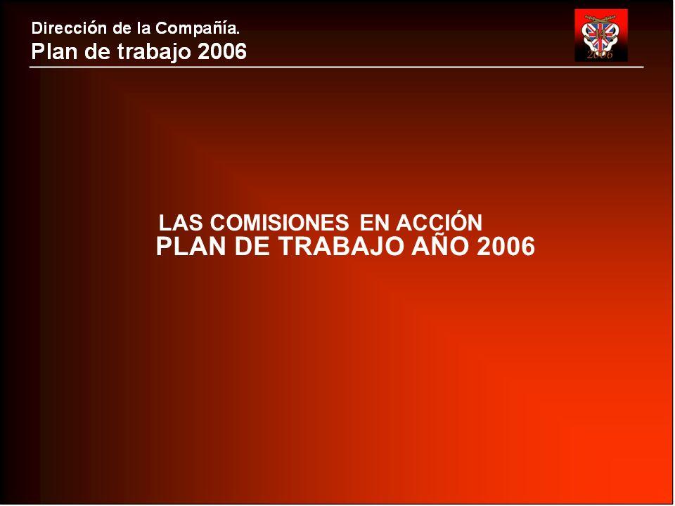 PLAN DE TRABAJO AÑO 2006 LAS COMISIONES EN ACCIÓN