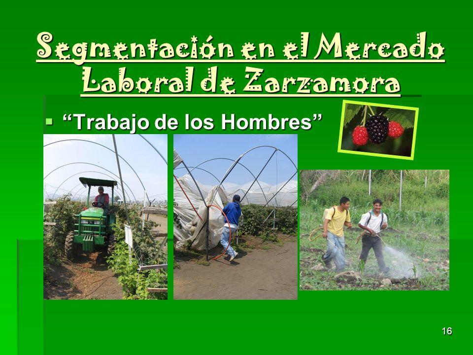 16 Segmentación en el Mercado Laboral de Zarzamora Trabajo de los Hombres Trabajo de los Hombres