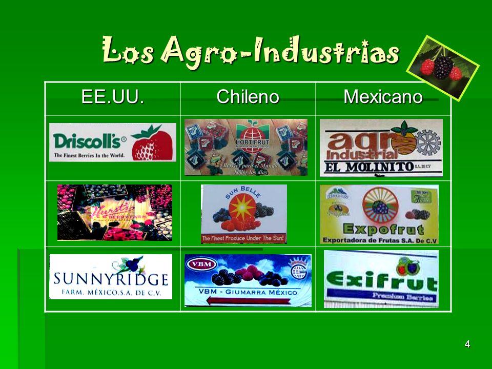 4 Los Agro-Industrias EE.UU.ChilenoMexicano