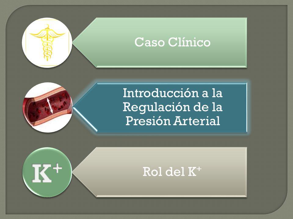 Caso Clínico Introducción a la Regulación de la Presión Arterial Rol del K + Introducción a la Regulación de la Presión Arterial