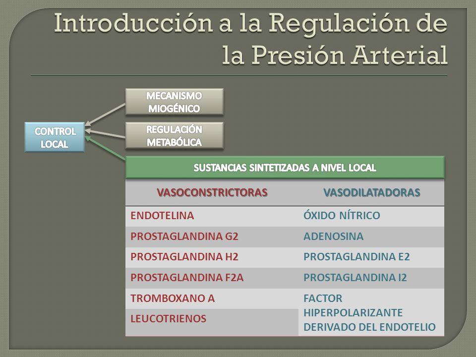 VASOCONSTRICTORASVASODILATADORAS ENDOTELINAÓXIDO NÍTRICO PROSTAGLANDINA G2ADENOSINA PROSTAGLANDINA H2PROSTAGLANDINA E2 PROSTAGLANDINA F2APROSTAGLANDIN