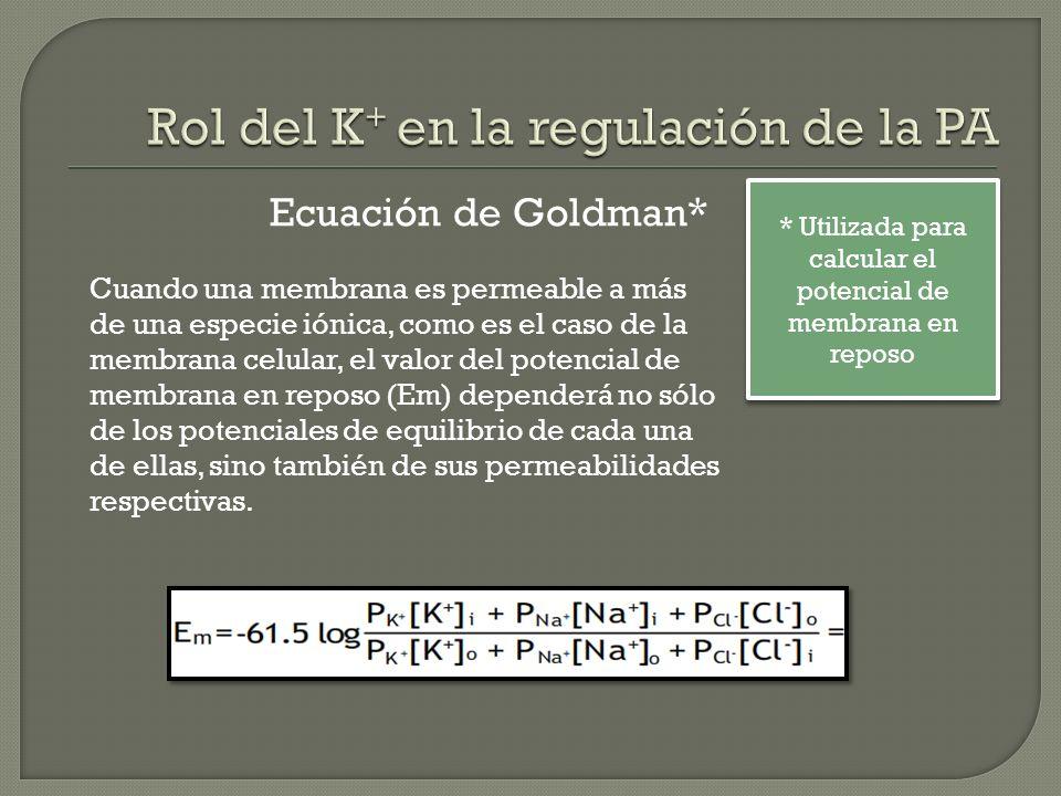 Ecuación de Goldman* Cuando una membrana es permeable a más de una especie iónica, como es el caso de la membrana celular, el valor del potencial de m
