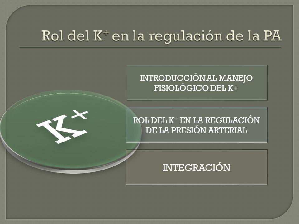 INTRODUCCIÓN AL MANEJO FISIOLÓGICO DEL K+ ROL DEL K + EN LA REGULACIÓN DE LA PRESIÓN ARTERIAL INTEGRACIÓN