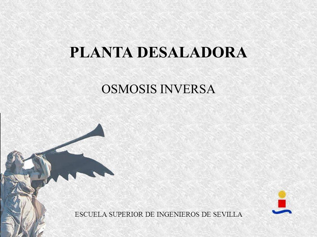 OSMOSIS INVERSA PLANTA DESALADORA ESCUELA SUPERIOR DE INGENIEROS DE SEVILLA