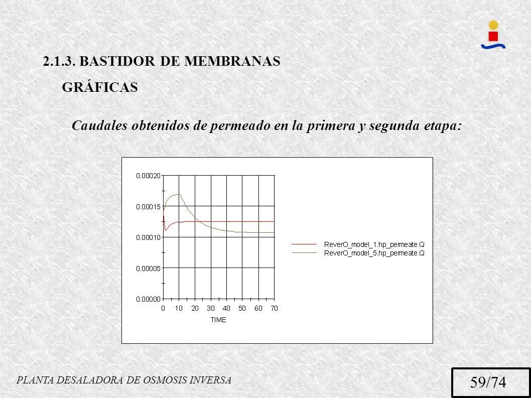 PLANTA DESALADORA DE OSMOSIS INVERSA 59/74 2.1.3. BASTIDOR DE MEMBRANAS GRÁFICAS Caudales obtenidos de permeado en la primera y segunda etapa:
