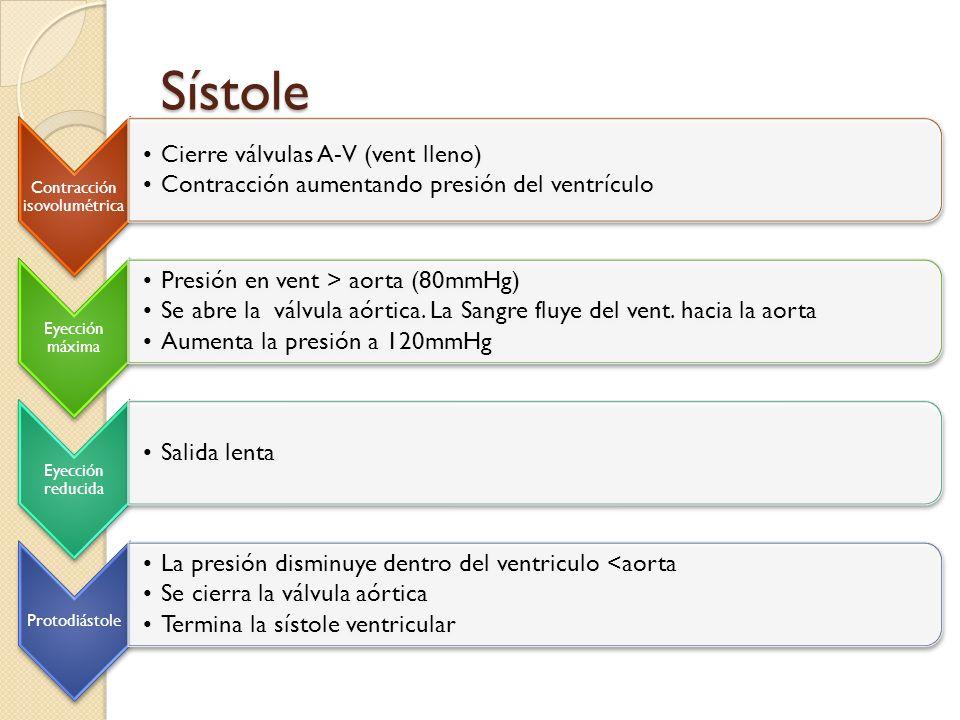 Sístole Contracción isovolumétrica Cierre válvulas A-V (vent lleno) Contracción aumentando presión del ventrículo Eyección máxima Presión en vent > ao