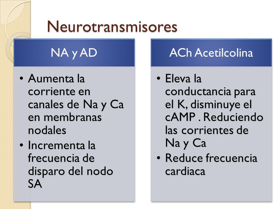 Neurotransmisores NA y AD Aumenta la corriente en canales de Na y Ca en membranas nodales Incrementa la frecuencia de disparo del nodo SA ACh Acetilco
