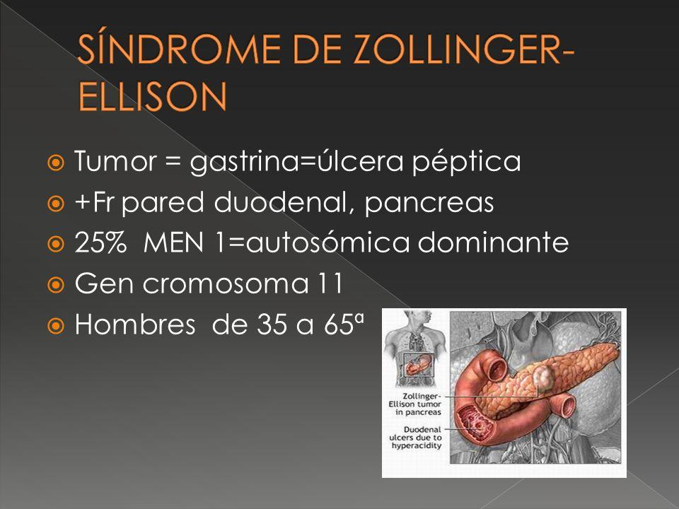 Tumor = gastrina=úlcera péptica +Fr pared duodenal, pancreas 25% MEN 1=autosómica dominante Gen cromosoma 11 Hombres de 35 a 65ª