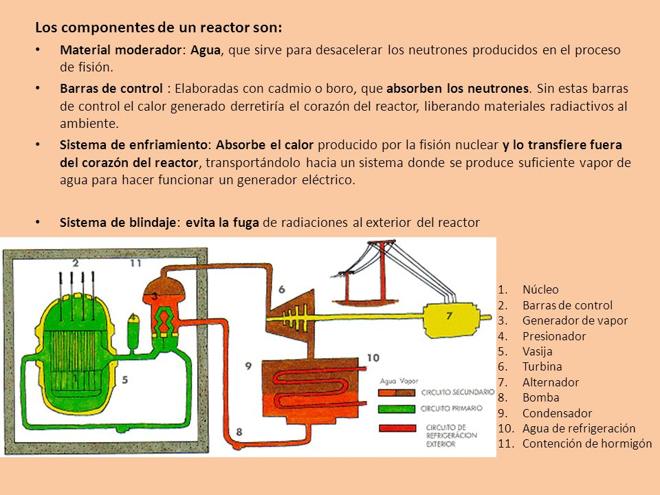 Los componentes de un reactor son: Material moderador: Agua, que sirve para desacelerar los neutrones producidos en el proceso de fisión. Barras de co