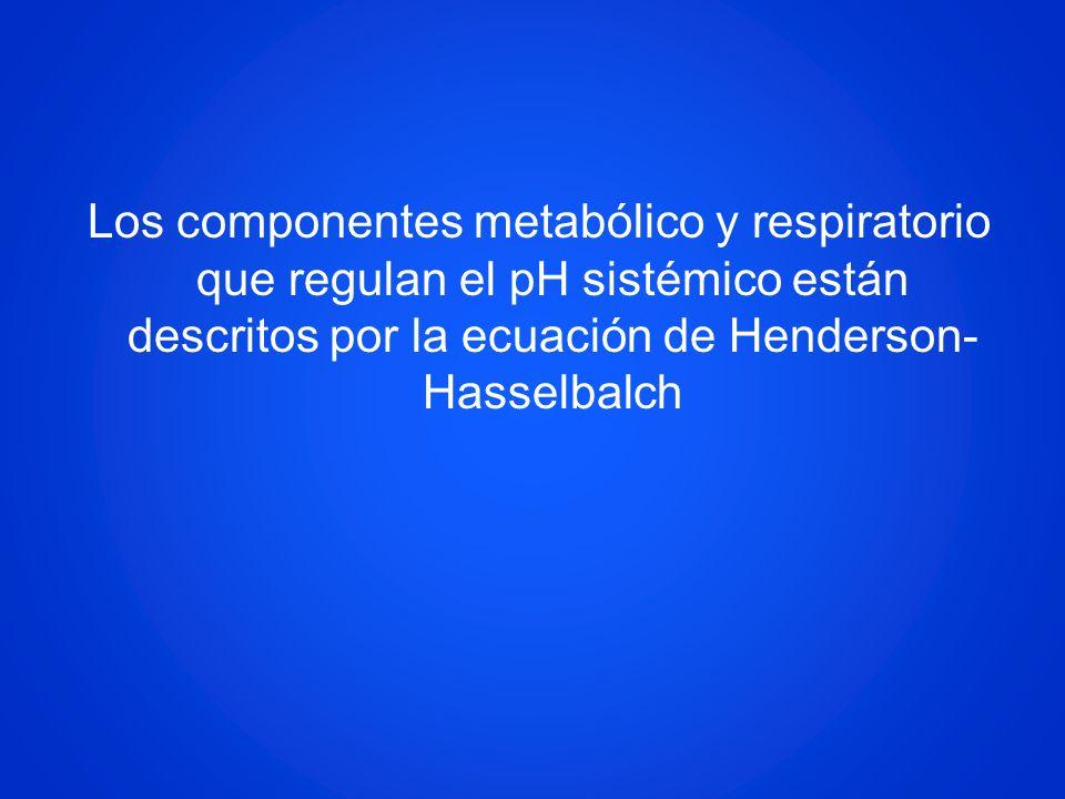 Los componentes metabólico y respiratorio que regulan el pH sistémico están descritos por la ecuación de Henderson- Hasselbalch